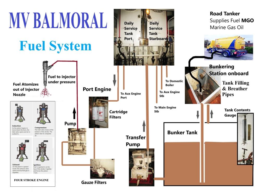 MV Balmoral Educational Factsheet G