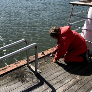 Maggie hard at work with repairing the deck.